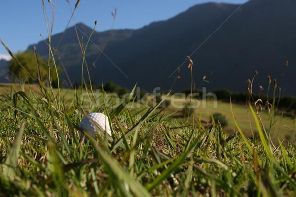 Golflabda fű golfpálya hegy terjedelem kék Stock fotó © vanessavr