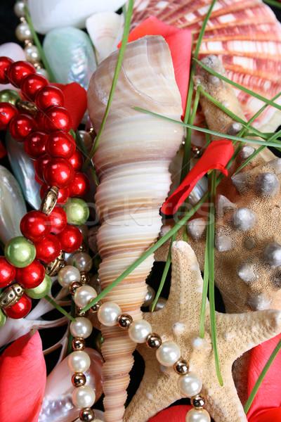 Seashells and jewelery Stock photo © vanessavr