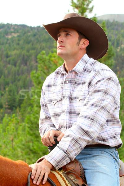 Vaqueiro apaixonado jovem tempo cavalo fazenda Foto stock © vanessavr