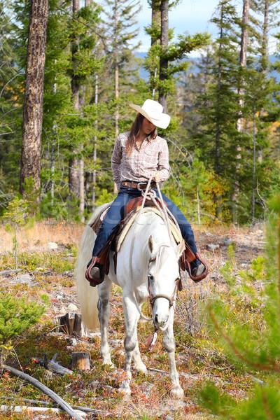 Horseback Riding Stock photo © vanessavr