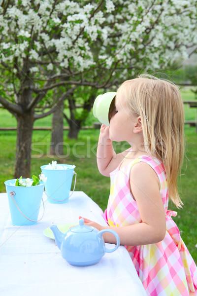 саду чай мало девушки вечеринка Сток-фото © vanessavr