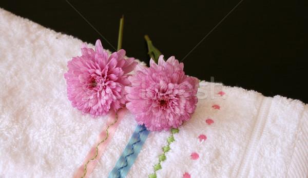 плюш розовый цветы стороны полотенце красоту Сток-фото © vanessavr