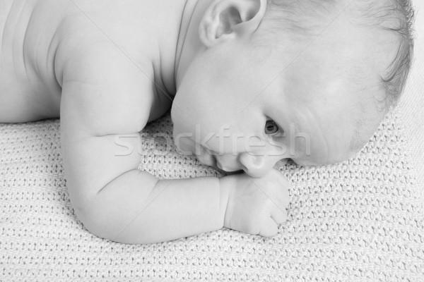 Baby chłopca miesiąc starych świetle koc Zdjęcia stock © vanessavr