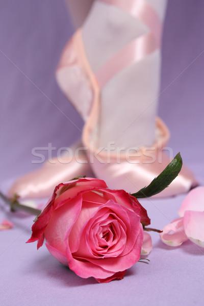 балет обуви атласных Розовые розы Focus закрывается Сток-фото © vanessavr