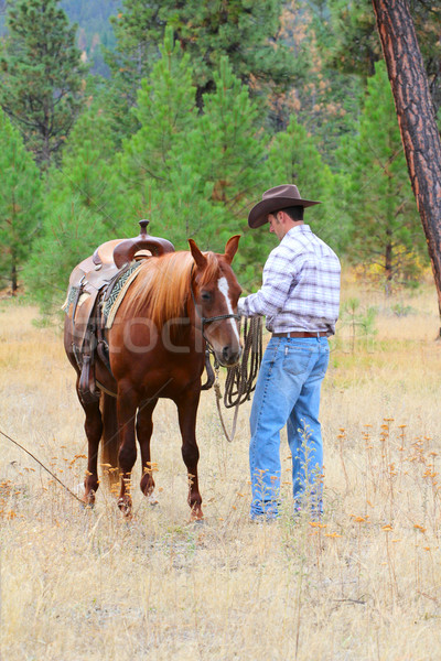 Cowboy молодые занят лошади области человека Сток-фото © vanessavr