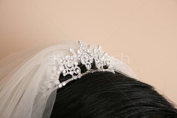 Tiare voile brunette mariée tête Photo stock © vanessavr
