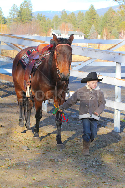 Cowboy and horse Stock photo © vanessavr