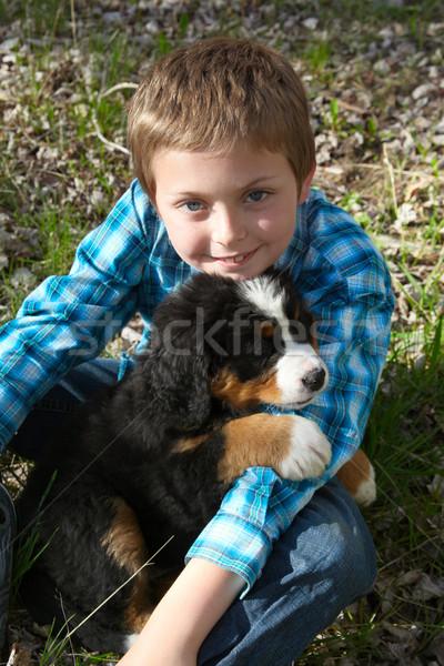 Chłopca szczeniak młody chłopak berneński pies pasterski wiosną psa Zdjęcia stock © vanessavr