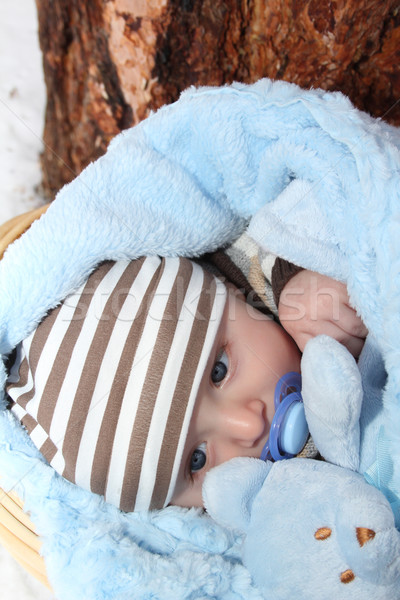 Winter Baby Stock photo © vanessavr