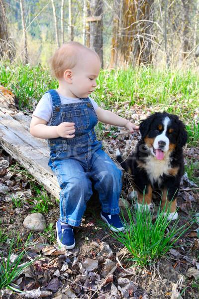 Barátok kisgyerek farmer átfogó játszik kutyakölyök Stock fotó © vanessavr