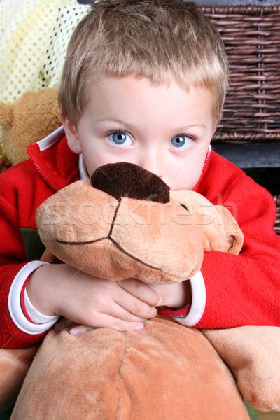 Loiro menino macio cachorro de brinquedo madeira Foto stock © vanessavr