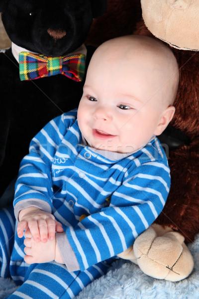 ребенка мальчика Cute сидят Медведи синий Сток-фото © vanessavr
