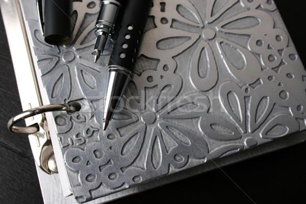 Fancy Pen on File Stock photo © vanessavr
