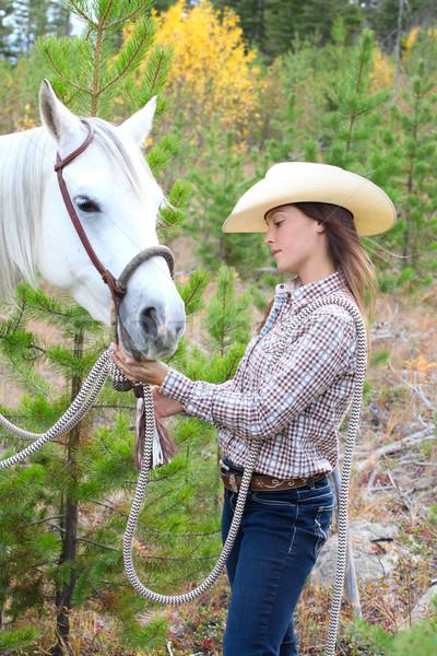 Horse and Human Stock photo © vanessavr