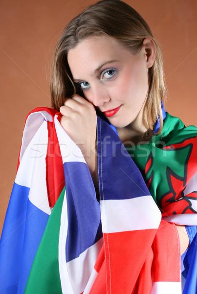Flags of Europe Stock photo © vanessavr