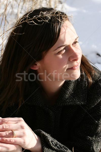 Winter day Stock photo © vanessavr