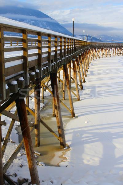 лосося руки пирс снега заморожены Сток-фото © vanessavr