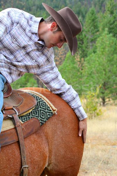 Appassionato cowboy giovani tempo cavallo bellezza Foto d'archivio © vanessavr
