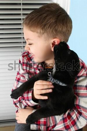 мальчика щенков красивой черный улыбка Сток-фото © vanessavr