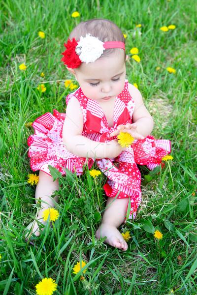 Bloem baby brunette vergadering veld Stockfoto © vanessavr