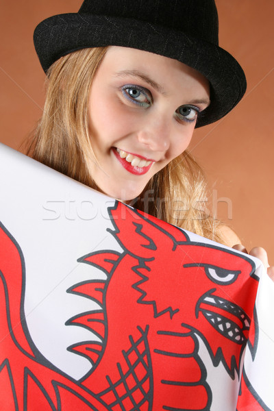 Wales Stock photo © vanessavr