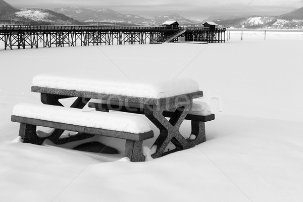 鮭 腕 雪 カバー ピクニック ベンチ ストックフォト © vanessavr