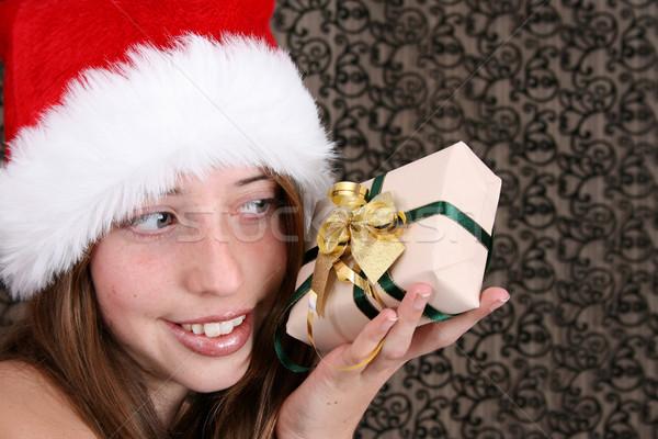 Christmas Beauty Stock photo © vanessavr