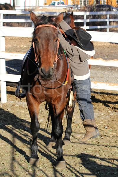 Cowboy jonge paard klimmen man sport Stockfoto © vanessavr