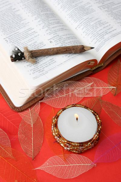 Bible pelle pezzo scrittura libro Foto d'archivio © vanessavr