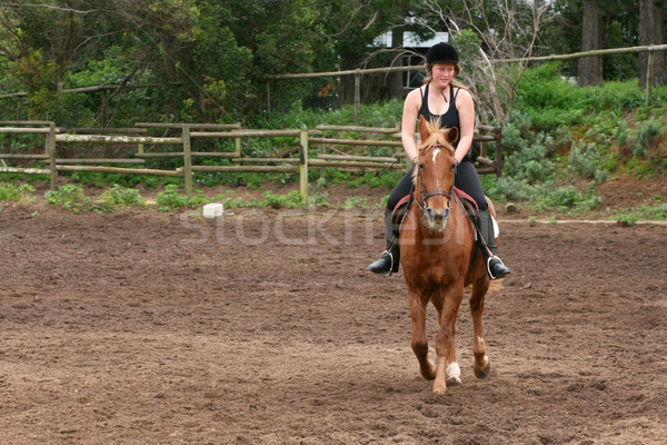 Horse Riding Stock photo © vanessavr