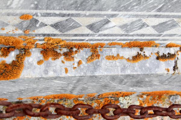 Stockfoto: Oranje · paddestoel · groeiend · grijs · outdoor · tegels