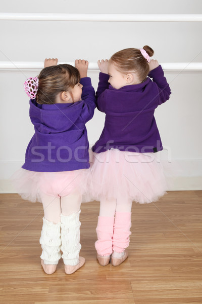 Ballet Friends Stock photo © vanessavr