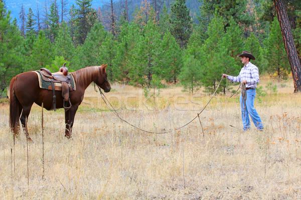 лошади тренер молодые Cowboy подготовки Сток-фото © vanessavr