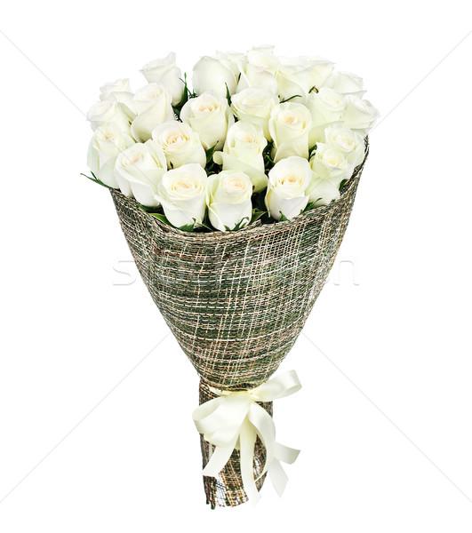 Branco rosas isolado casamento rosa Foto stock © vankad