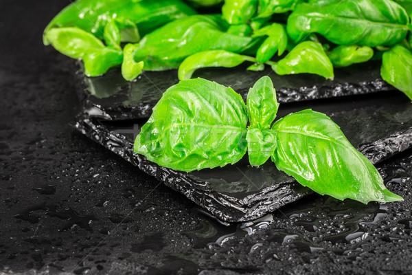Basil leaves on a black slate Stock photo © vankad