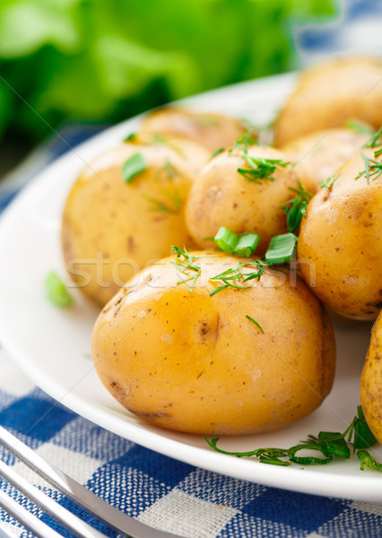 Potato with dill and scalliom Stock photo © vankad