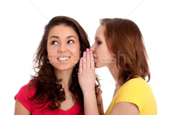 Foto d'archivio: Due · donne · sorridere · shot · bianco · donna