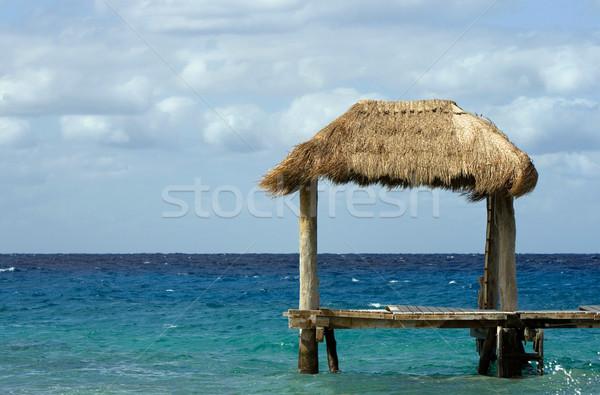 Tropicales hutte océan nuageux jour ciel Photo stock © vankad