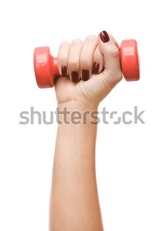 Female hand holding a dumbbell Stock photo © vankad