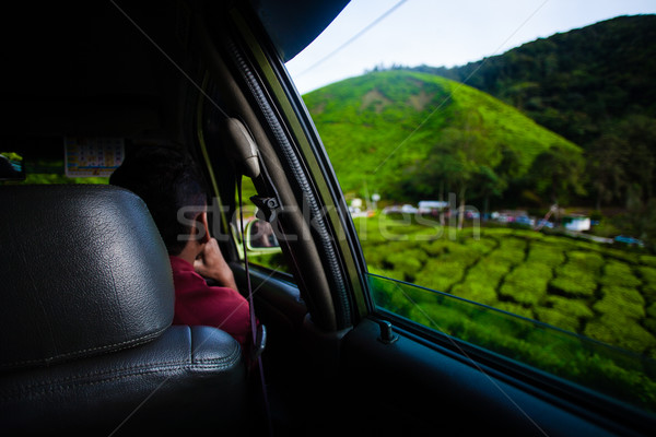 çay görmek araba pencere dağlık yeşil Stok fotoğraf © Vanzyst