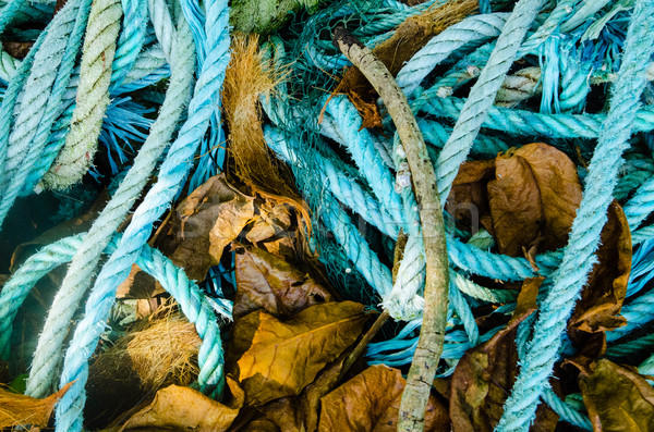 Background of color fishing net and cord on the heap Stock photo © Vanzyst