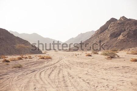 горные пустыне небе природы пейзаж лет Сток-фото © Vanzyst