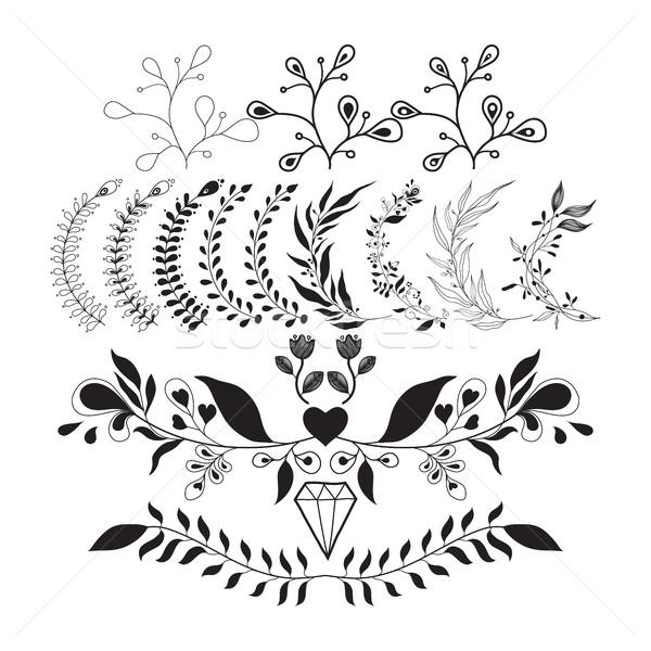 набор вектора цветочный Элементы дизайна декоративный Сток-фото © Vanzyst