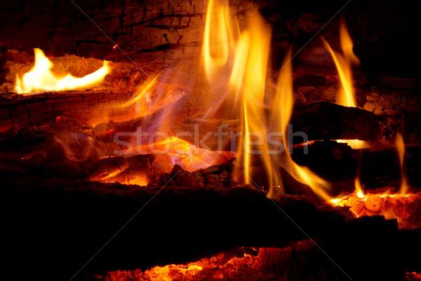 Vlam tips brandhout textuur abstract natuur Stockfoto © vapi