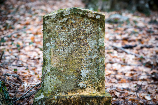 Ancient tombstone Stock photo © vapi