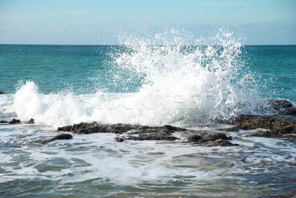 Büyük dalgalar kıyı deniz köpük plaj Stok fotoğraf © vapi