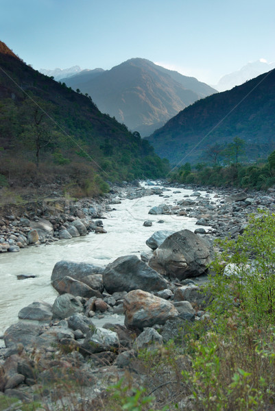 Foto stock: Rio · tibete · água · grama · floresta