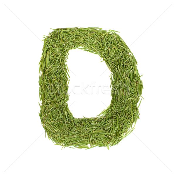 Zöld ábécé d betű izolált fehér tavasz Stock fotó © vapi