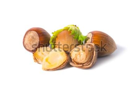 Pile of hazel nuts Stock photo © vapi