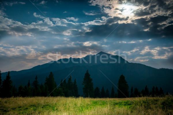 Green grass near mountain at night Stock photo © vapi